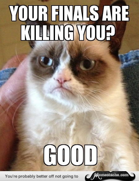50 Most Funny Grumpy Cat Meme Of All Time
