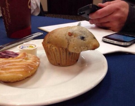 My muffin is a hamster, your argument is invalid