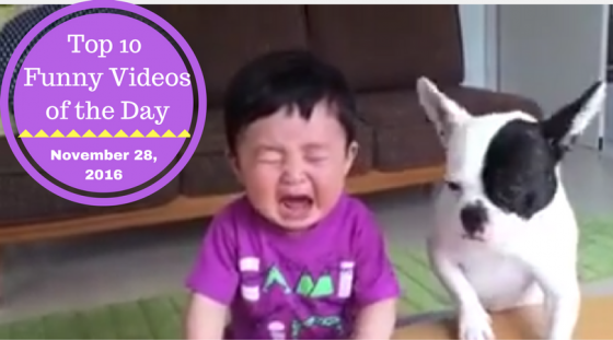 Top 10 Funny Videos of the Day – November 28, 2016