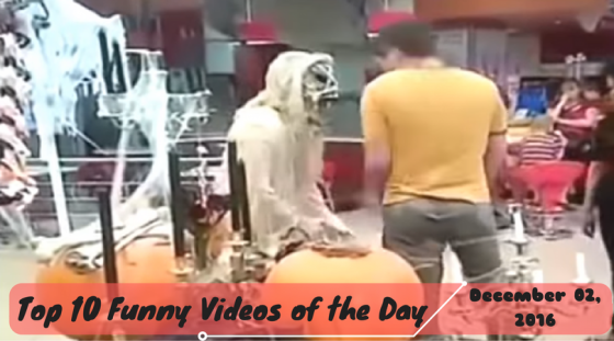 Top 10 Funny Videos of the Day – December 02, 2016