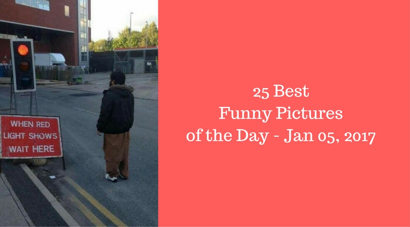 25 best funny pictures of the day jan 05 2016 for Top pictures of the day