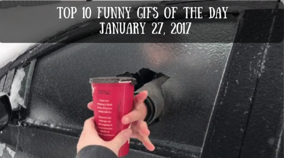 Top 10 Funny GIFs of the Day – January 27, 2017