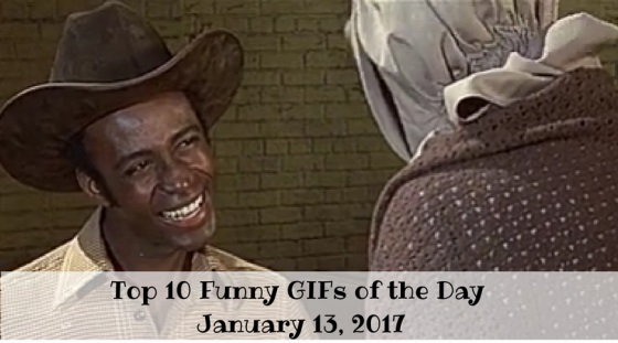 Top 10 Funny GIFs of the Day – January 13, 2017
