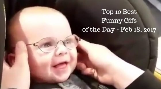 Top 10 Best Funny Gifs of the Day – Feb 18, 2017